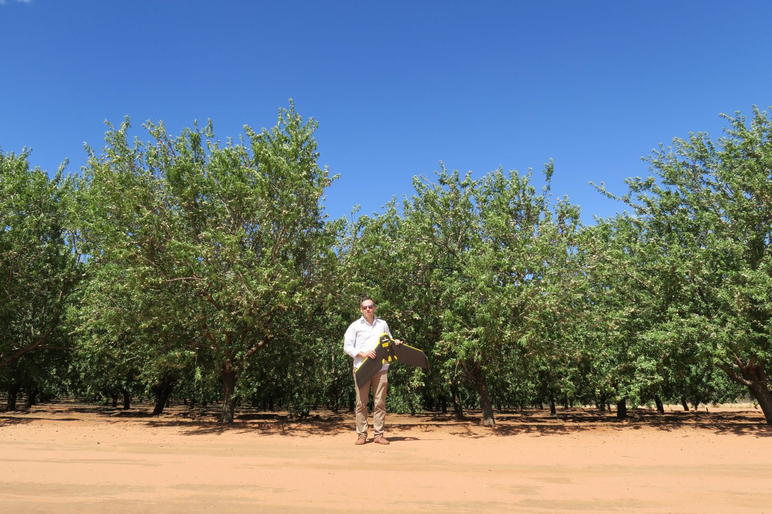 Omar in Almond farm