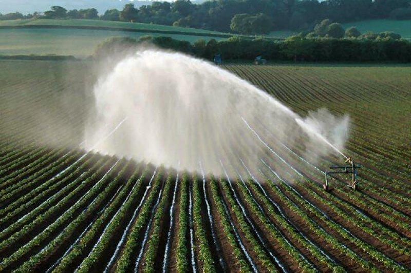 Watering farm